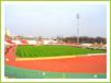 FC Dinamo Bucuresti